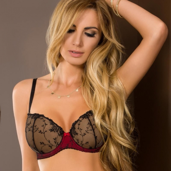 Amour - Black and Red Sheer Balconette Bra