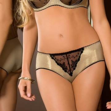 Goldie - Golden Glossy See Through Hipster Panties