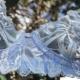 Cookie - Blue Sheer Balconette Bra