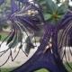 Good Girl - Deep Purple Sheer Balconette Bra