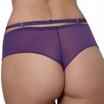 Cheeky Panties Miami Vibe Purple - Sheer Cheeky Panties