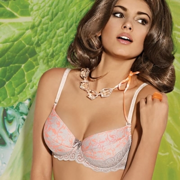 Brigitte - Light Grey Lace Push up Bra